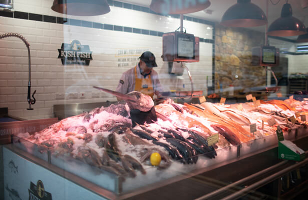 A shop clerk looking at the fish range exposed in his shop